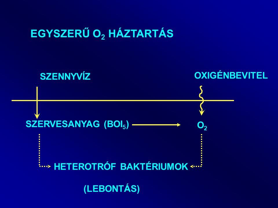 giardia lamblia parazita hpv magas kockázatú egyéb genotípus