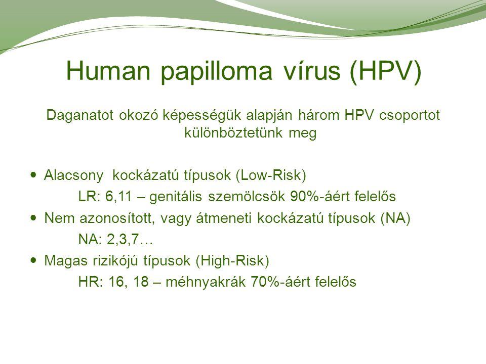tabletták az emberi test parazitái ellen vírusok a sarokban