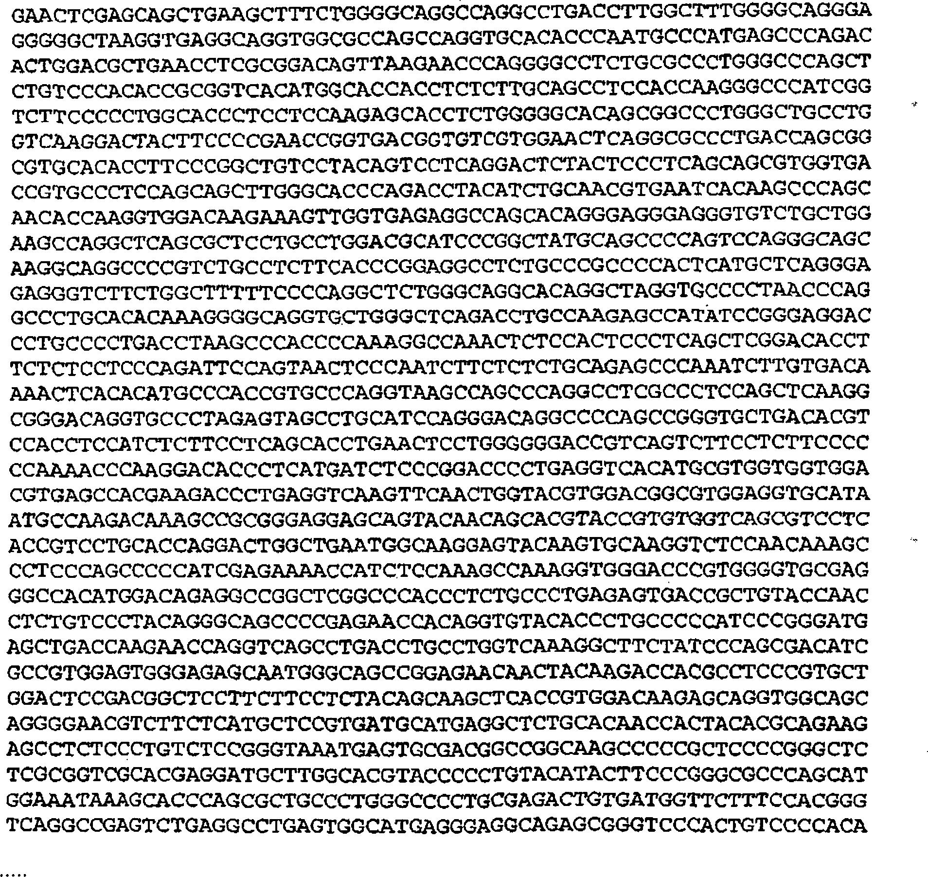 májrák def condyloma acuminata irodalom