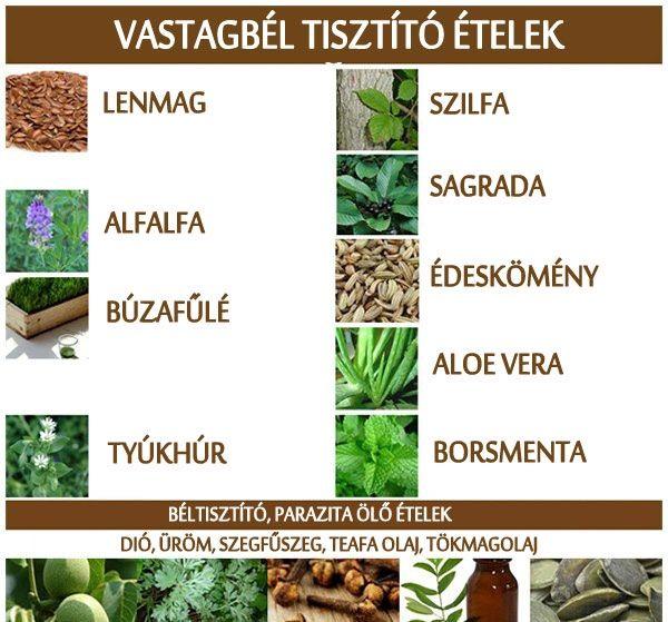 természetes receptek a vastagbél méregtelenítésére