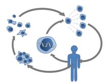 orsóférgek és helminták gyógyszere képek papilloma vírus emberről