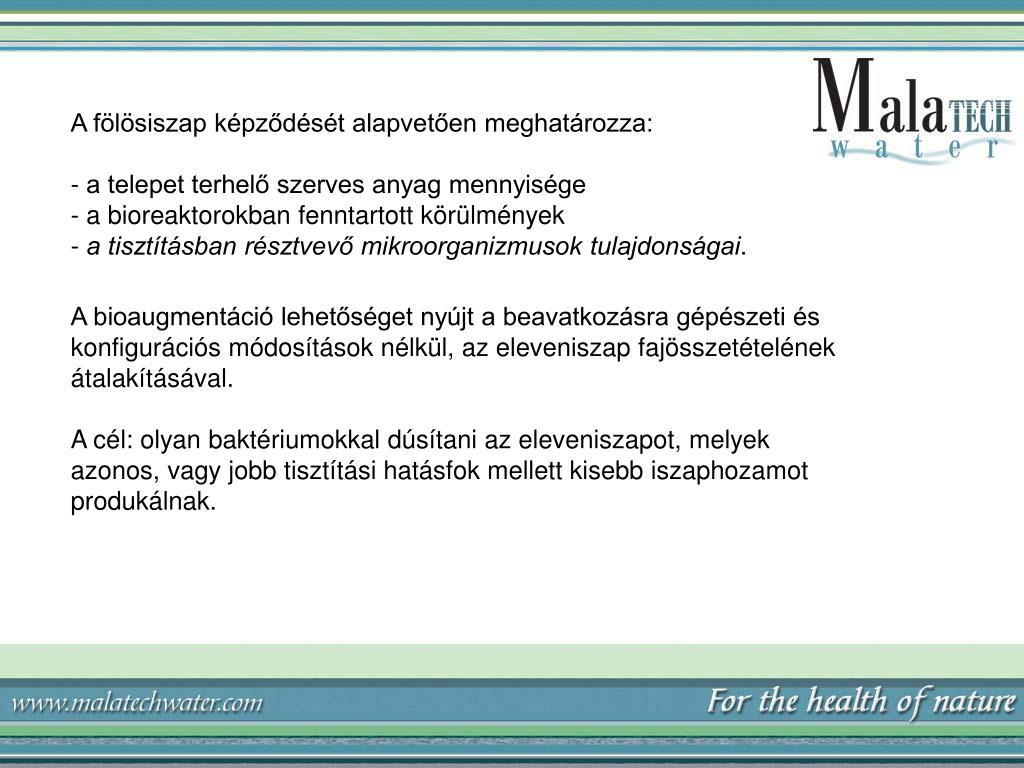 meghatározza aschelminthes t megelőző intézkedések a helminthiasis ellen