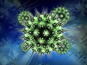 hasnyálmirigyrák humán papillomavírus hpv szemölcsök a torkán