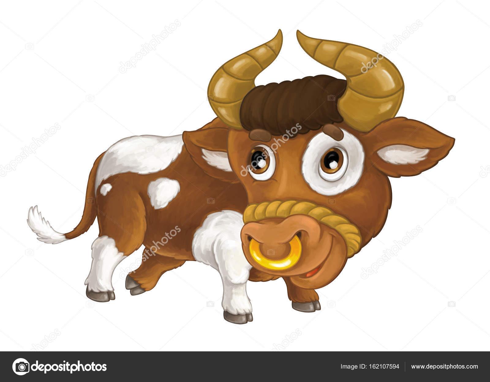 hogy néz ki egy bika feje