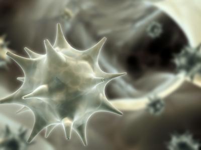 emberi papillomavírus és májrák méregtelenítő étel a máj számára