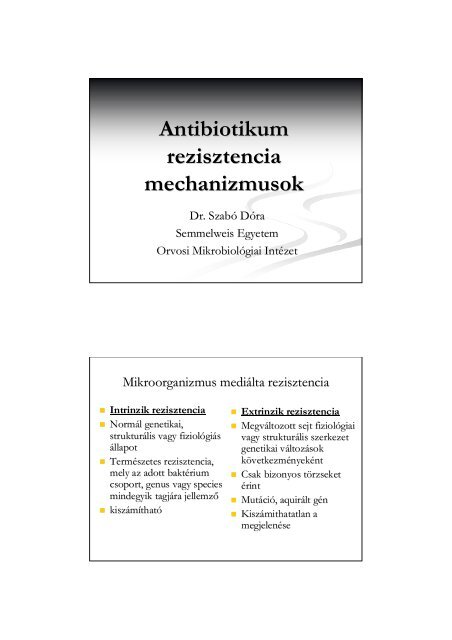 klebsiella pneumoniae baktériumok