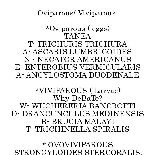 enterobius vermicularis viviparous emberben a helminthiasis kezelésének eszközei