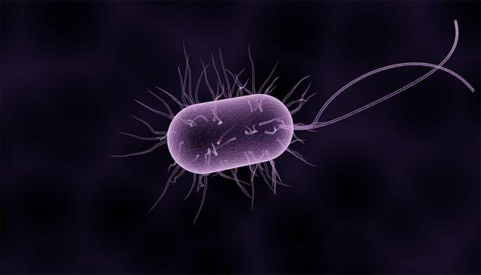 parazita és mozgu a prosztatarák átterjed