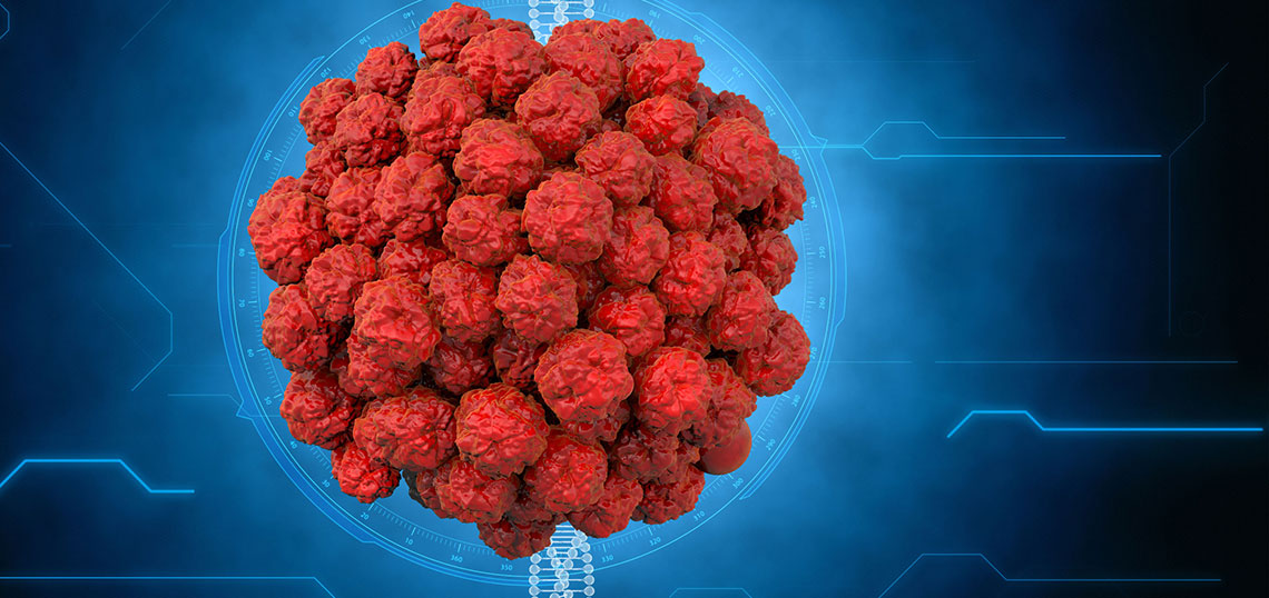 papilloma vírus 39 pinworms betegség kezelése