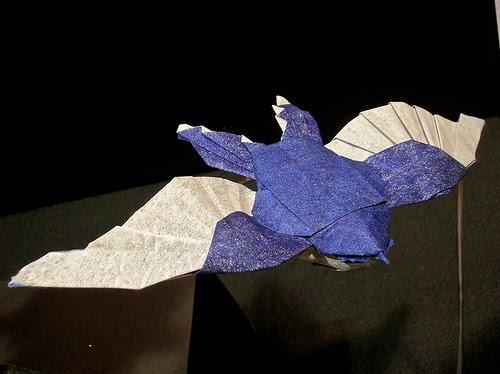 a hirsutoid papillómákat okoz