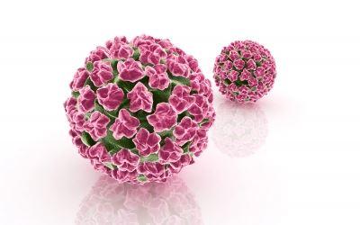 HPV: újonnan felismert kockázati tényező a fej-nyaki rákok kialakulásában   butor-lakberendezes.hu